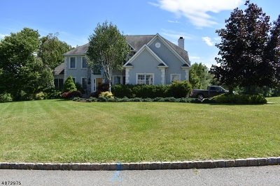 Sparta Twp. Single Family Home For Sale: 15 Skyview Dr