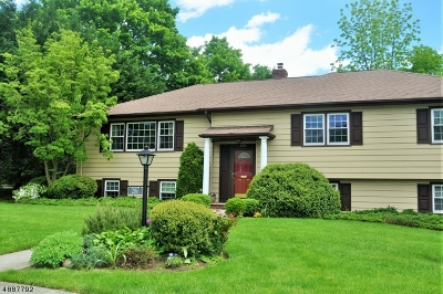 Westfield Town Single Family Home For Sale: 206 Lynn Ln
