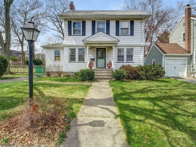 Springfield Twp. Single Family Home For Sale: 11 Alvin Ter