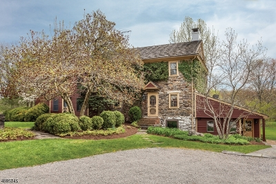 Kingwood Twp. Single Family Home For Sale: 30 Stompf Tavern Rd