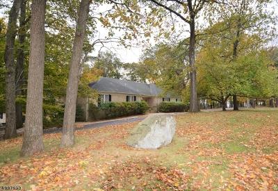 Bethlehem Twp., High Bridge Boro Single Family Home For Sale: 512 Lannon Ln