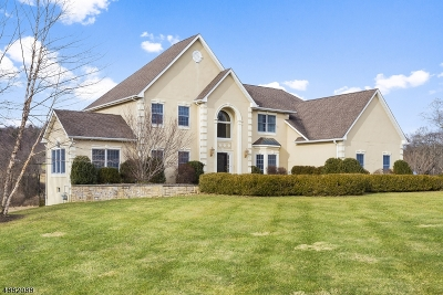 Tewksbury Twp. Single Family Home For Sale: 193 Old Turnpike Road