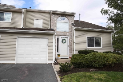 East Hanover Twp. Condo/Townhouse For Sale: 58 Castle Ridge Dr