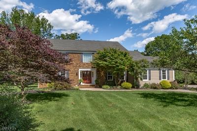 Bernards Twp., Bernardsville Boro Single Family Home For Sale: 154 Woods End