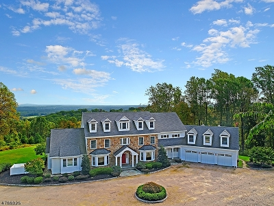 Oldwick Single Family Home For Sale: 124 Old Turnpike Rd