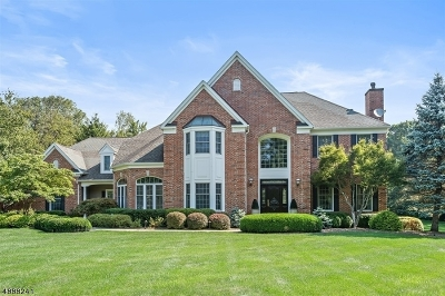 Chester Twp. NJ Single Family Home For Sale: $1,049,000