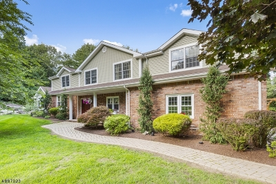 Chester Twp. NJ Single Family Home For Sale: $719,000