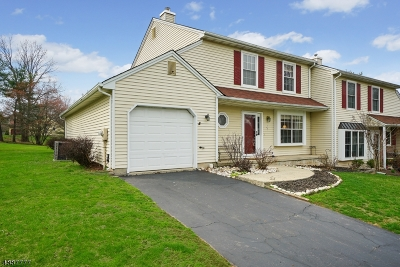 Branchburg Twp. Single Family Home For Sale: 84 Arapaho Trl