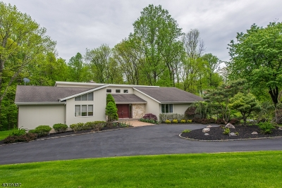 Chester Twp. NJ Single Family Home For Sale: $725,000
