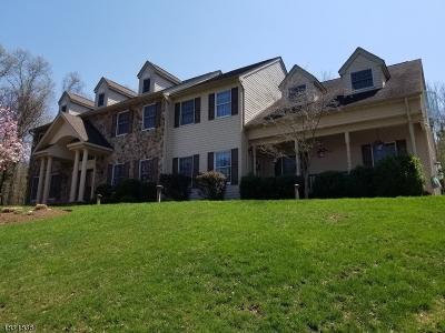Readington Twp. Single Family Home For Sale: 25 Rockaway Rd