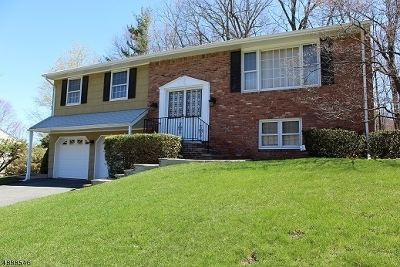 Rockaway Twp. Single Family Home For Sale: 24 Kings Rd