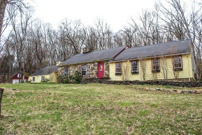 Boonton Twp. Single Family Home For Sale: 502 Rockaway Valley Rd