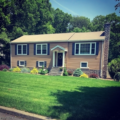Parsippany Single Family Home For Sale: 45 Foxcroft Rd