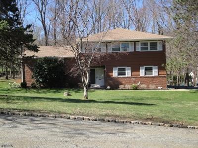 Denville Twp. Single Family Home For Sale: 11 Van Dorn Pl