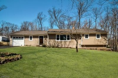 Bridgewater Twp. Single Family Home For Sale: 987 Buxton Rd