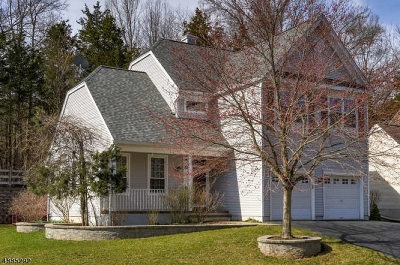 Readington Twp. Single Family Home For Sale: 58 Plantation Rd