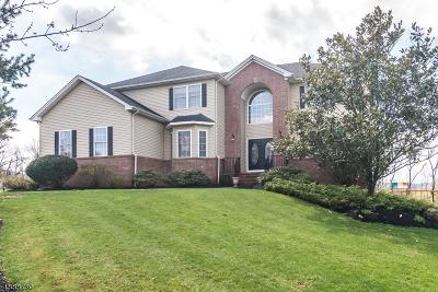 Warren County Single Family Home For Sale: 300 Emeline Way