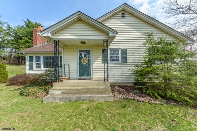Warren County Single Family Home For Sale: 463 Rt 519