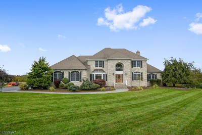 Hillsborough Twp. Single Family Home For Sale: 3 Castle Hill Ln