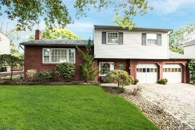 Cranford Twp. Single Family Home For Sale: 41 Concord St