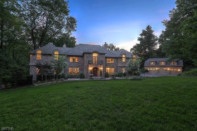 Mendham Twp. NJ Single Family Home For Sale: $1,995,000