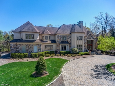 Bernards Twp., Bernardsville Boro Single Family Home For Sale: 136 Darren Dr