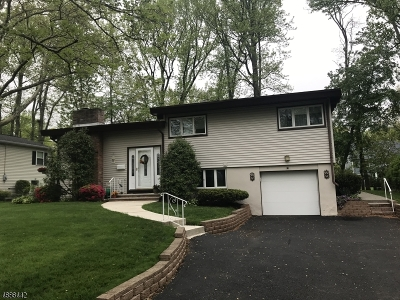 Fanwood Boro Single Family Home For Sale: 103 N Glenwood Rd