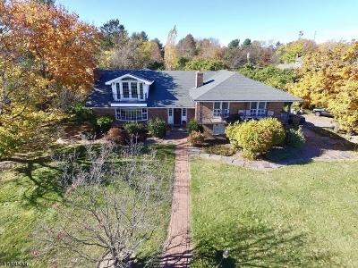 Flemington Boro, Raritan Twp. Single Family Home For Sale: 164 Klinesville Rd