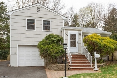 Springfield Twp. Single Family Home For Sale: 183 Henshaw Ave