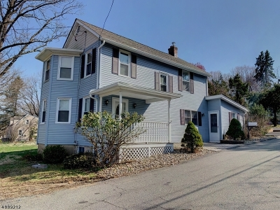Morristown Town, Morris Twp. Single Family Home For Sale: 244 W Hanover Ave