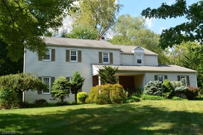 Morris County Single Family Home For Sale: 15 Independence Dr