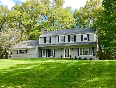 Branchburg Twp. Single Family Home For Sale: 307 Swan Ct