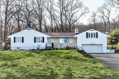 Mountainside Single Family Home For Sale: 1098 Sunny View Rd