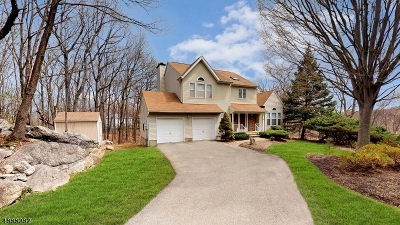 Morris County Single Family Home For Sale: 10 Stoneleigh Ter