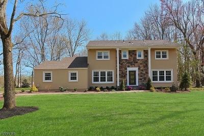 Scotch Plains Twp. Single Family Home For Sale: 5 Frances Ln