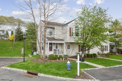 Bedminster Twp. Condo/Townhouse For Sale: 380 Finch Ln