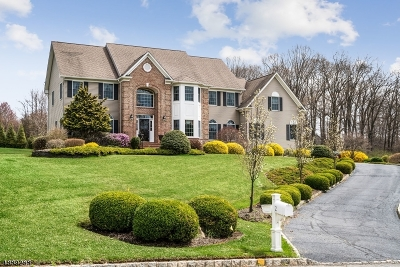 Chester Twp. NJ Single Family Home For Sale: $890,000