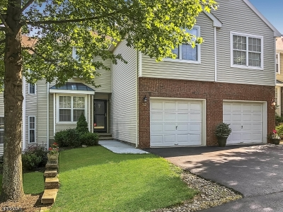 Clinton Twp. Condo/Townhouse For Sale: 12 Shackamaxon Ter