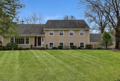 Bernards Twp., Bernardsville Boro Single Family Home For Sale: 56 Fieldstone Dr
