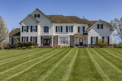 Montgomery Twp. Single Family Home For Sale: 21 Van Zandt Rd