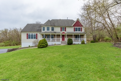 Clinton Twp. Single Family Home For Sale: 3 Busch Ct