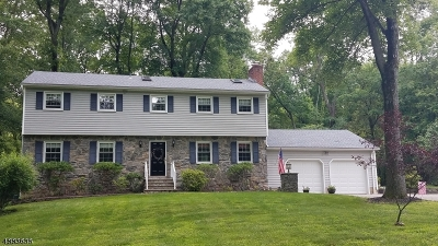 Bernards Twp. Single Family Home For Sale: 105 Mountain Rd