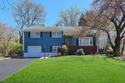 Cranford Twp. Single Family Home For Sale: 413 Walnut Ave