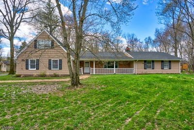 Bridgewater Twp. Single Family Home For Sale: 959 Severin Dr