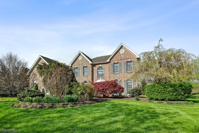 Montgomery Twp. Single Family Home For Sale: 4 Kingfisher Lane