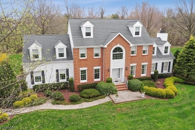 Branchburg Twp. Single Family Home For Sale: 308 Kelly Dr
