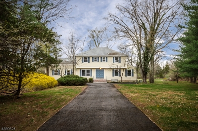 Montgomery Twp. Single Family Home For Sale: 85 Cherry Brook Dr