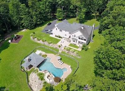 Glen Gardner Boro, Hampton Boro, Lebanon Twp. Single Family Home For Sale: 19 Shady Ln