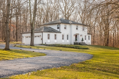 East Amwell Twp. Single Family Home For Sale: 64 Lindbergh Rd