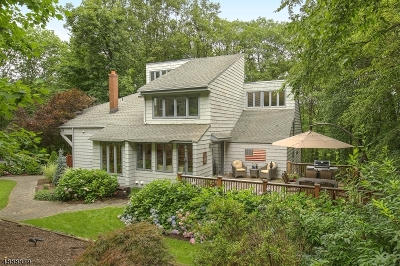 Mendham Boro, Mendham Twp. Single Family Home For Sale: 4 Mount Pleasant Rd